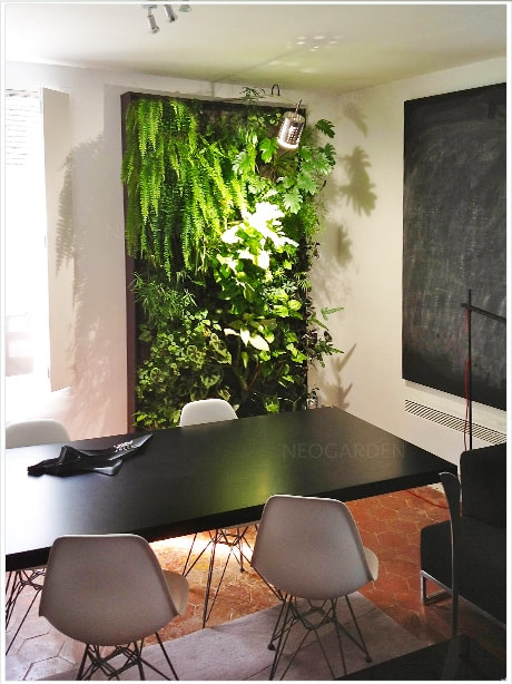 des plantes vertes pour notre bien tre. Black Bedroom Furniture Sets. Home Design Ideas